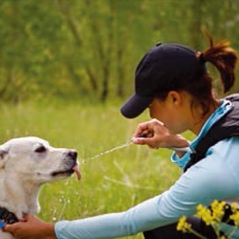 散歩中に愛犬に給水をちょーかっこよくしよう!!GEIGERRIG(ガイガーリグ)ハイドレーション